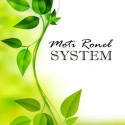 שיטת מוטי רונאל