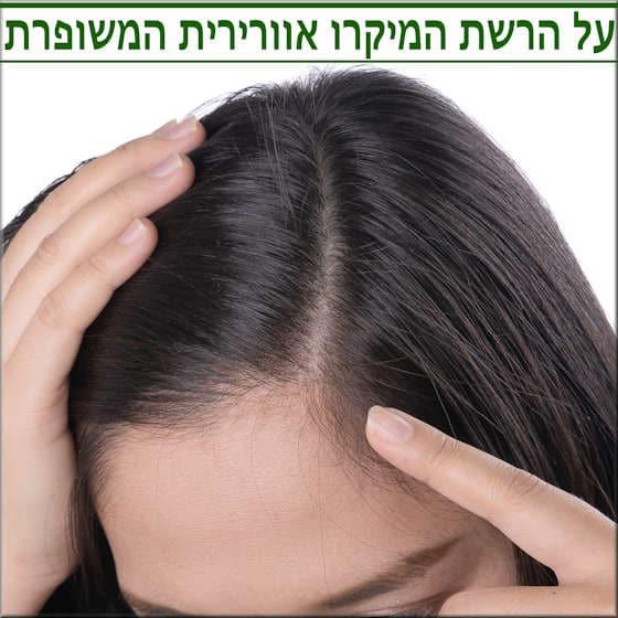הרשת המיקרו אוורירית החדישה למילוי שיער דליל